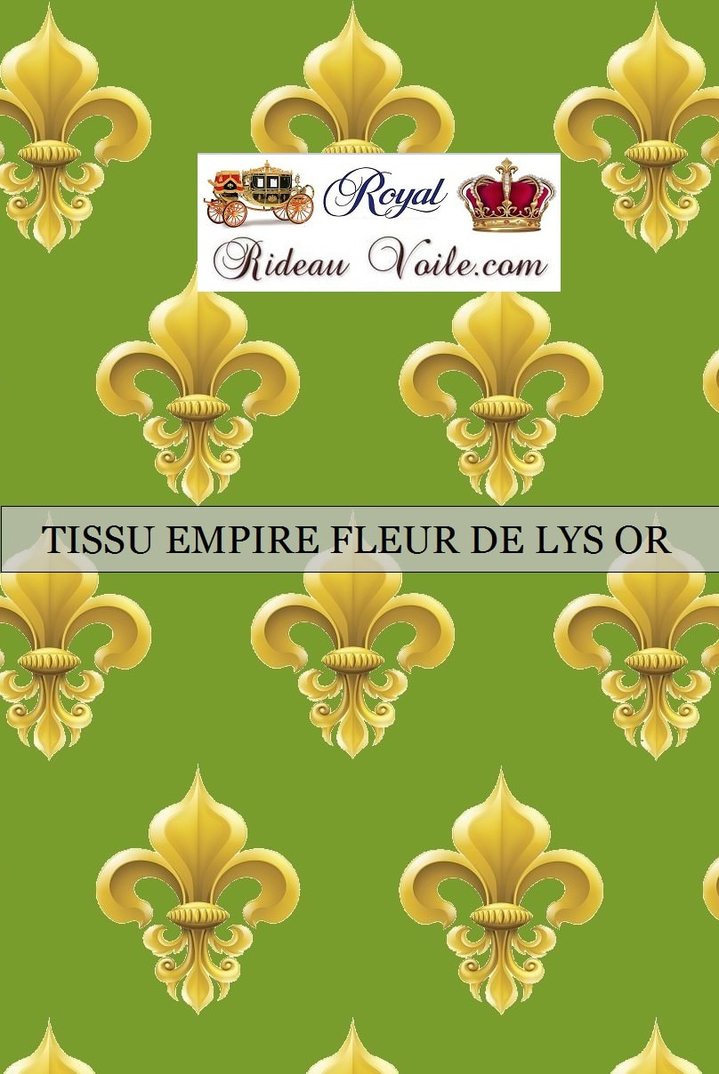 ornement style empire fleur de lys royal tissu ameublement rouge jaune France Paris Versailles
